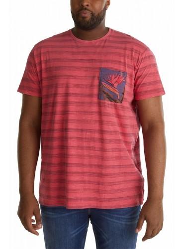 Camiseta Chad Rojo de ESPRIT