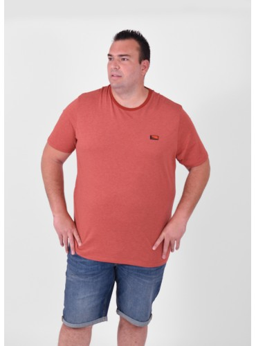 Camiseta Oschultz Teja de...