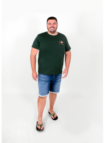Camiseta Aran Verde de GANT