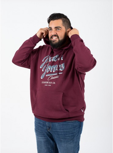 Sudadera Logo Sweat de...